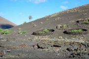 Itinerary 4. Timanfaya National Park: Tremesana