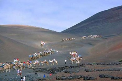 Itinerary 2. Timanfaya National Park: Camel resting place